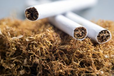 'Soon-to-be-defunct' SA Tobacco Institute to ramp up resources in fight against illegal cigarette trade